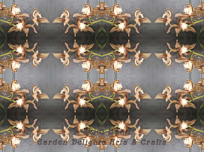 Tracyanum kaleidoscope