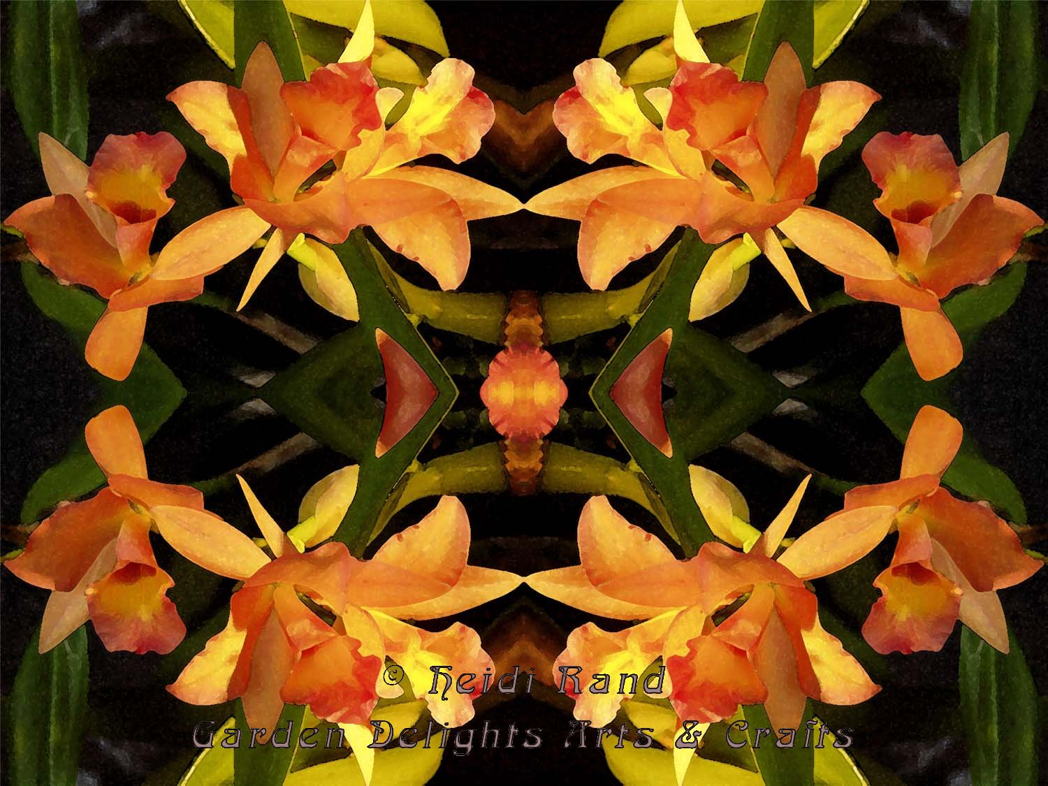 Yellow cymbidium kaleidoscope