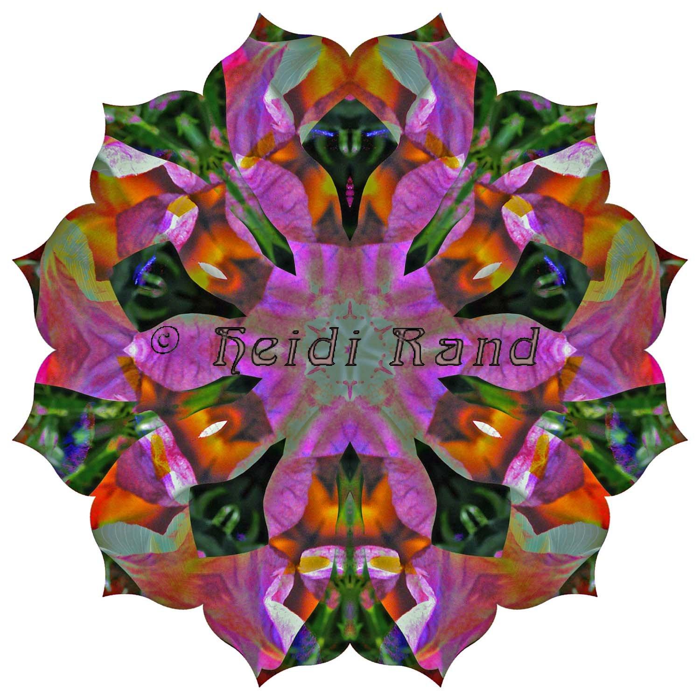 Calla lily black iris collage mandala
