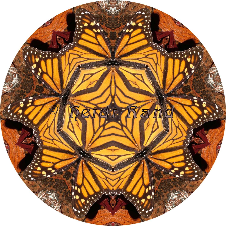 Monarch butterfly mandala