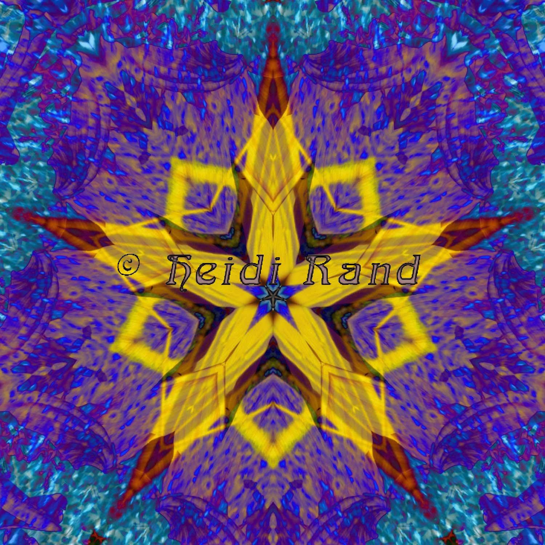 Sunflower center star mandala
