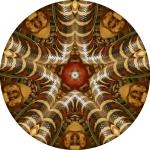 Snake star mandala